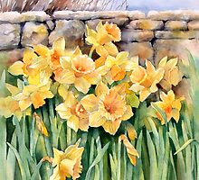 Cotswold Daffodils by Ann Mortimer