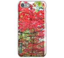 Autumn Red - Great Smoky Mountains National Park, North Carolina iPhone Case/Skin