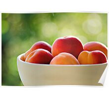 Apricots.. Poster