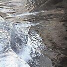 Light on Frozen Pond by Lynn Wiles