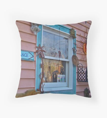 Window Of Art Throw Pillow