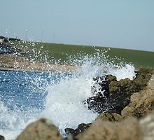 wave crash by Tom Davies