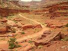 Country Roads of Canyonlands Utah by David  Hughes