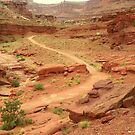 Country Roads of Canyonlands Utah by David  Hughes