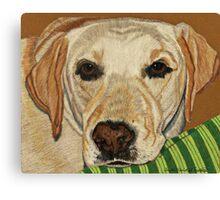 Labrador Retriever - Yellow Canvas Print