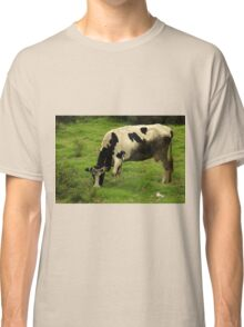 Holstein Cow Grazing on a Farm Classic T-Shirt