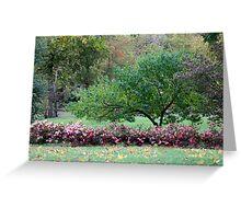 Autumn Park Scenery Greeting Card