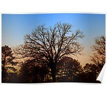 Desolate Sunset Poster