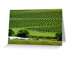 VIEW of the VINEYARD    ^ Greeting Card