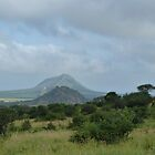 Landscape of Kenya, Africa. by Anita  Fletcher