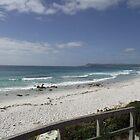 Friendly Beaches (Tasmania) by gaylene