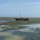 Fishing Boat, Kenya, Africa by Anita  Fletcher