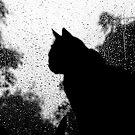 Rain, rain, go away by Robert Down