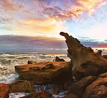 Sandstone Rocks at Hargraves ii by Tam  Locke