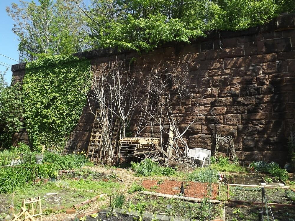 Brunswick Community Garden, Harsimus Branch Embankment, Jersey City by lenspiro