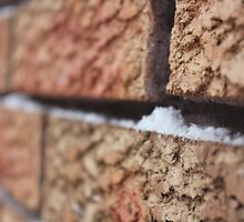 Bricks of Frost by co0kiem0nster