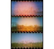 rio de los americanos Photographic Print