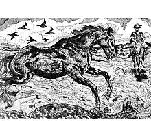 The Horse of Nastratin Hodgea Photographic Print
