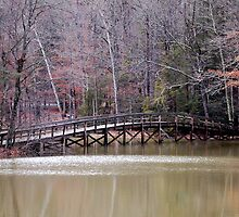 Hungry Mother Foot Bridge by Mechelep