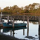 Old Fishing Boats & Oyster Leases @ TUNCURRY, NSW by aussiebushstick