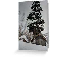 Snowed In Greeting Card