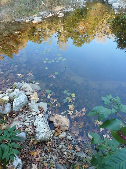 Pond (Large Watergarden)-How to Make a Pond by JeffeeArt4u
