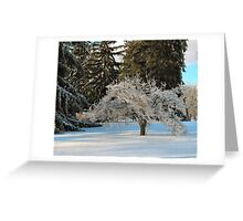Ice storm - small tree Greeting Card