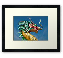 china dragon head Framed Print