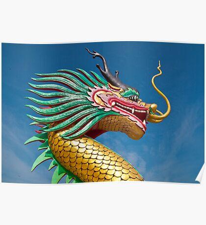 china dragon head Poster