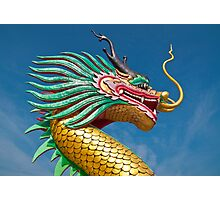 china dragon head Photographic Print