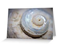 she sells - sea shells viii Greeting Card