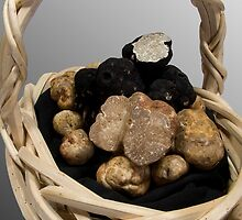 Oregon Truffles in a Basket by OrPhotoJohn