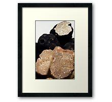 Oregon Black & White Truffles Framed Print