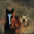 Riders in the Sky by Carol Bleasdale