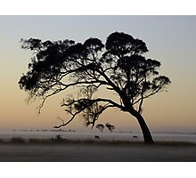 A hush lay over the land. Photographic Print