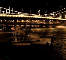 Danube Dreams  by LoveSMP