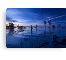 Menindee Blues Canvas Print