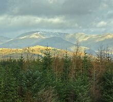 The Fairfield Horseshoe by VoluntaryRanger