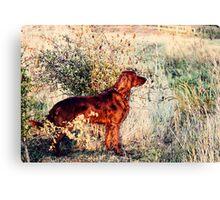 Summer Lee Doggie Canvas Print