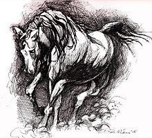 Running Staillion by Dan Wilcox
