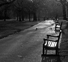Empty seat, St James Park, London by JLCampbell