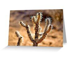 Desert Life Greeting Card