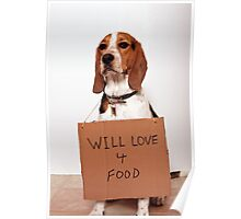 Will love 4 food Poster