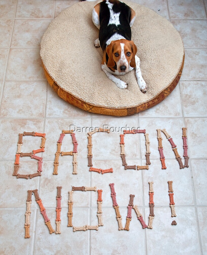 Bacon Now! by Darren Boucher