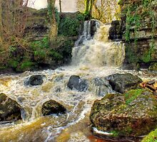 Cliff Beck Falls - HDR by Colin J Williams Photography
