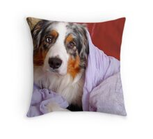 Cezanne Blue and the lavender Scarf Throw Pillow