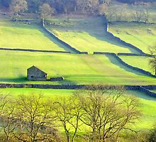 The Yorkshire Dales by Colin  Williams Photography