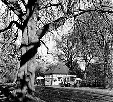 Phoenix Park Tea Rooms by Dave  Kennedy