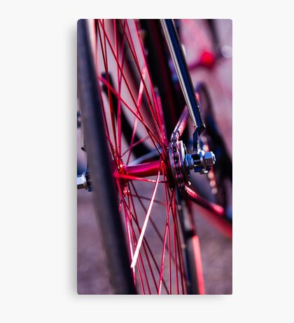 color of the wheel Canvas Print