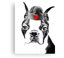 Boston Terrier - Valentines Day Canvas Print
